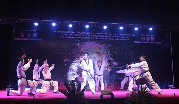 dem-hoi-sac-mau-hnmu-2016-16