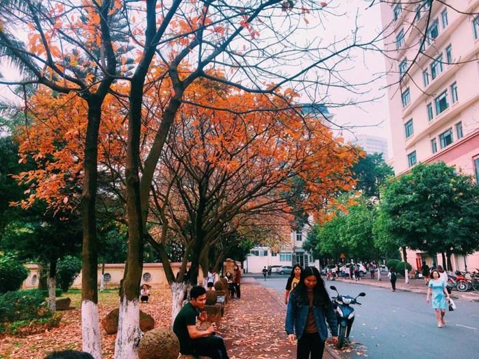 top 3 trường đại học sư phạm hàng đầu tại hà nội